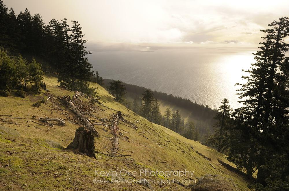 The view Mount Warburton Pike on Saturna Island