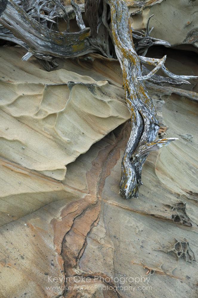 Sculpted sandstone on Tumbo Island