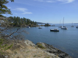 Anchored in Princess Bay, Portland Island