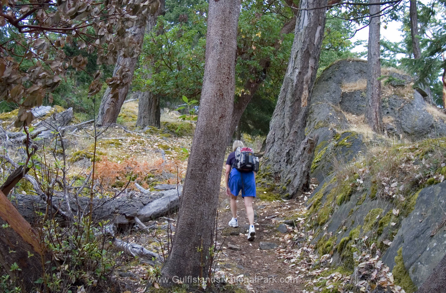 Hiking up Mt Norman, South Pender Island