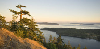 Mt Norman, South Pender Island