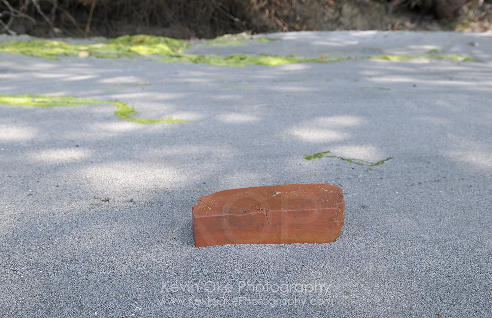 Old brick left behind by the Sidney Tile and Brick Company, Sidney Spit, Gulf Islands National Park Reserve of Canada