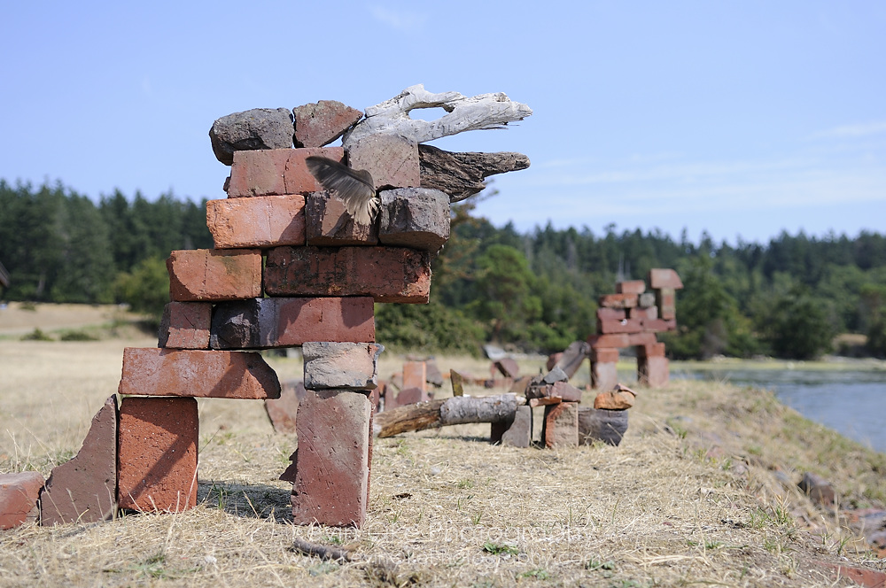 Animals made out of old bricks and driftwood, Sidney Spit, Gulf Islands National Park Reserve of Canada