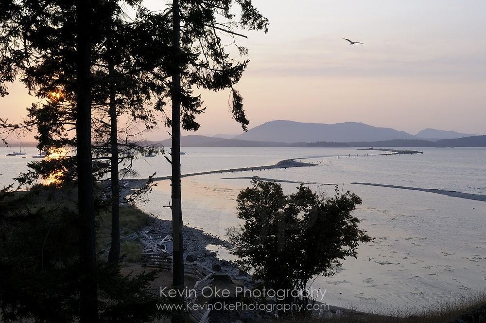 View of Sidney Spit from the top of the cliffs, Sidney Spit, Gulf Islands National Park Reserve of Canada