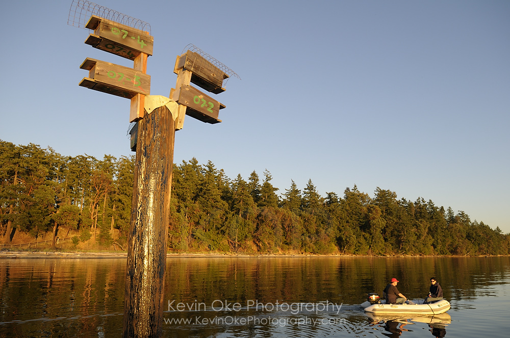 Purple martin birdhouses with people in a tender traveling by, Sidney Spit, Gulf Islands National Park Reserve of Canada