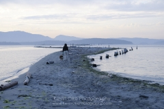 Women and dog walking along Sidney Spit at sunset with the old pilings, Gulf Islands National Park Reserve of Canada