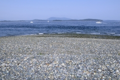 Colourful rocks on the beach at the end of Sidney Spit, Gulf Islands National Park Reserve of Canada