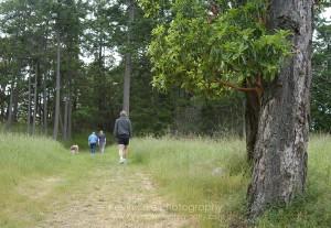 Hiking on Campbell Point, Bennett Bay, Mayne Island
