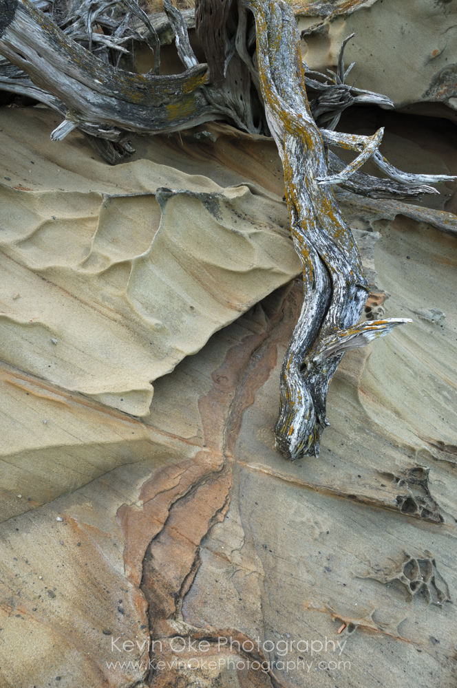 Sculpted sandstone on Tumbo Island