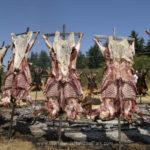 Saturna Island Lamb BBQ