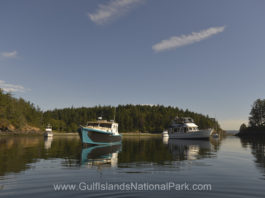 Boat at anchor in Princess Bay during the solar eclipse